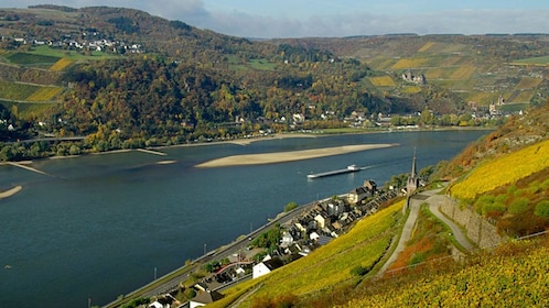 View of the Rhine River with towns on either side