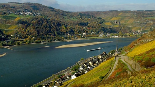 View of the Rhine River and towns along its bank