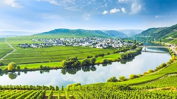 Day Tour of the Moselle Valley