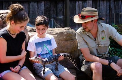 Australian Reptile Park Admission Tickets