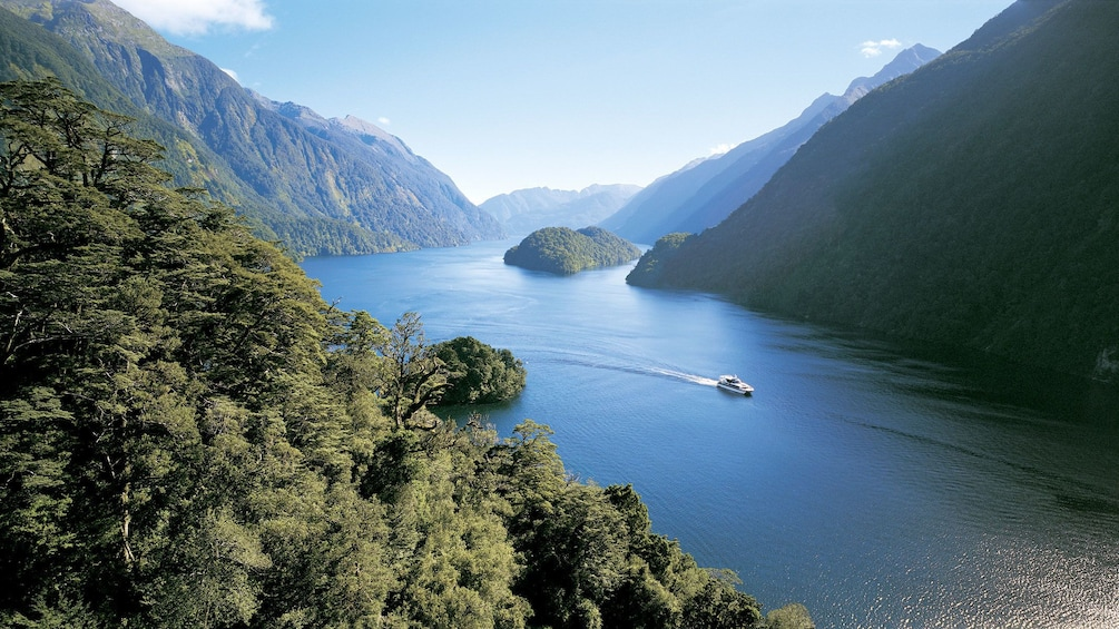 Show item 2 of 9. Catamaran on Doubtful Sound passing tree-covered mountains in New Zealand