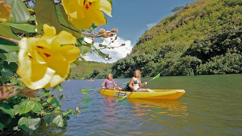 large yellow flowers and kayakers in Kauai