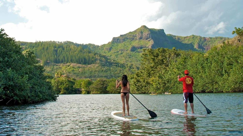 Wailua River Stand-Up Paddleboard Rental