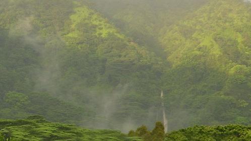Tree-covered mountain on Oahu