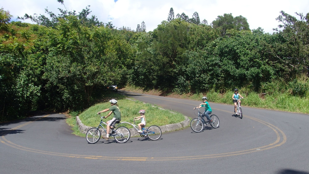 Ride safely down the paved jungle roads and hairpin turns in Oahu