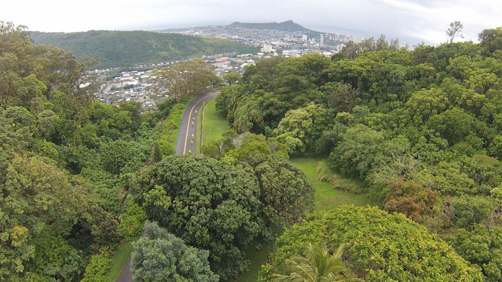 View from the Manoa lookout, halfway down the bike trail in Oahu