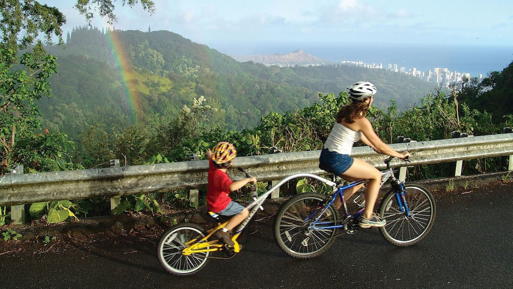 Tandem bike options are available on this downhill adventure