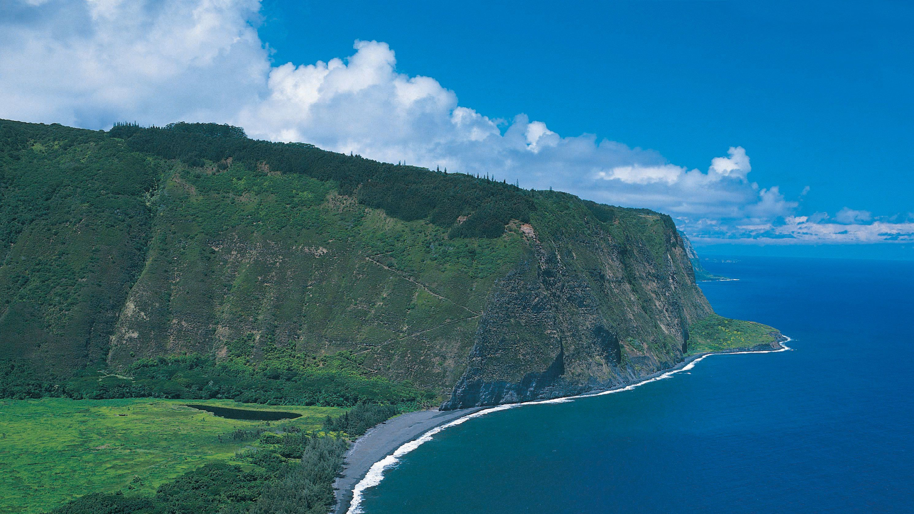 Aerial of cliff and flat grass land along the shore of the Big Island in Hawaii