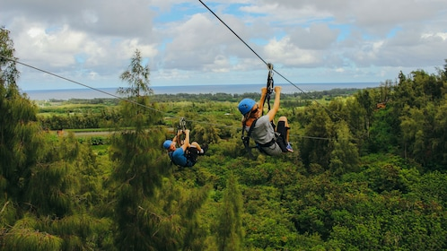 Witness scenic views of Oahu's North Shore farm on the Zipline Tour