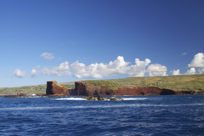 Show item 3 of 8. Lanai Snorkeling & Dolphin Sighting