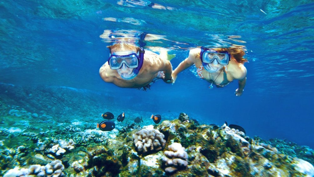 Show item 1 of 8. Underwater view of a couple of snorkelers on the Lanai Snorkel Dolphin Sighting in Maui