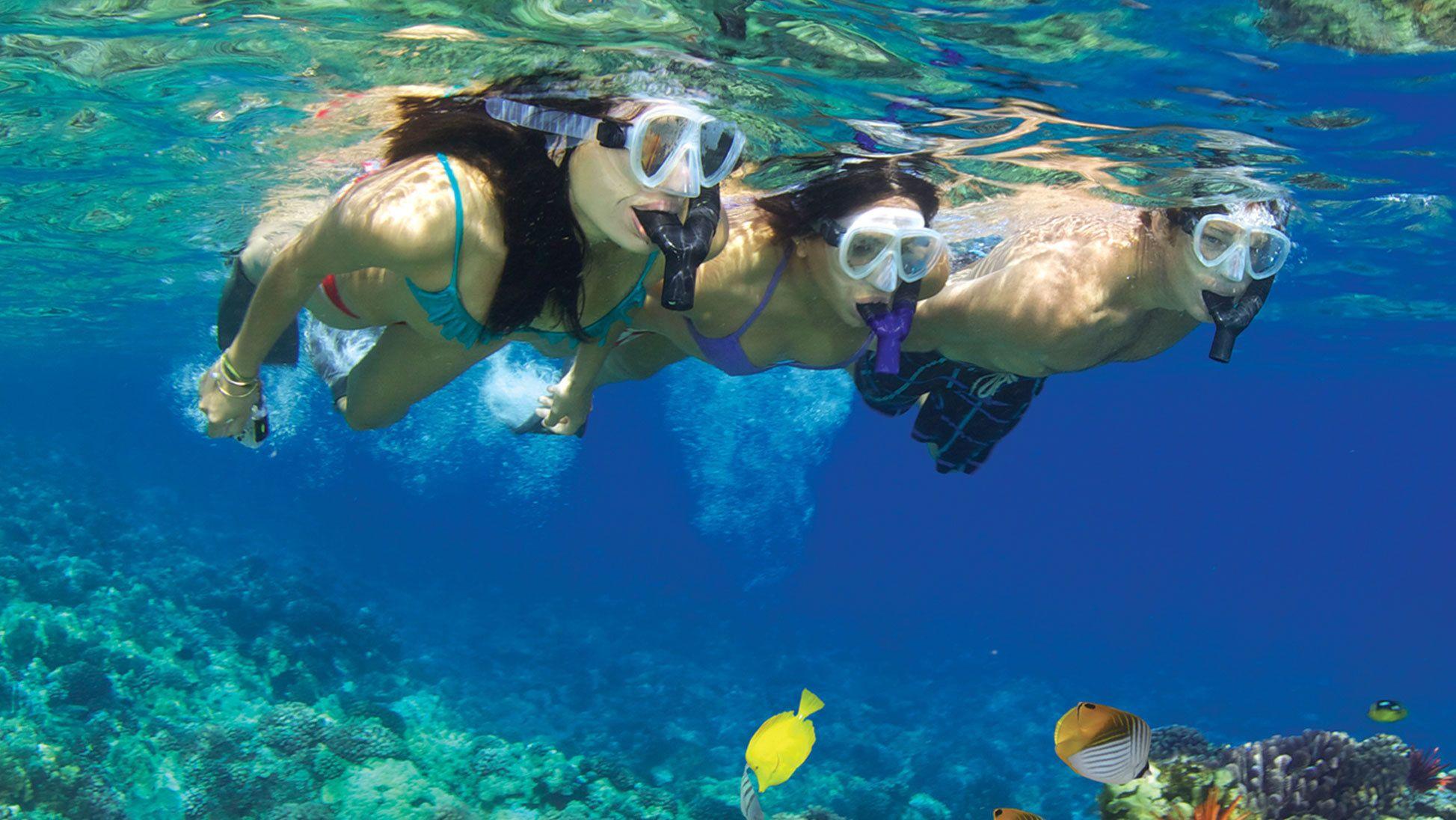 Group snorkeling in the ocean near Maui