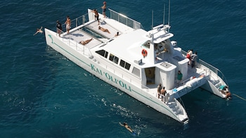 Dolphin-Watching & Snorkelling Cruise