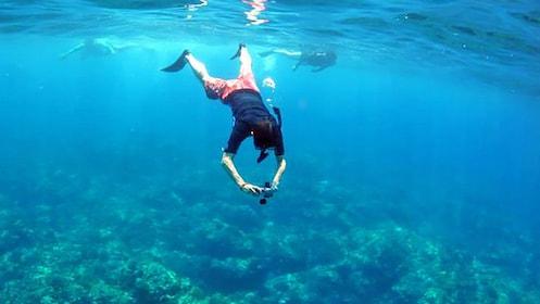 Snorkeling taking underwater photos in Hawaii