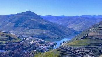 Tour langs de plaatselijke wijngaarden van de Douro-vallei