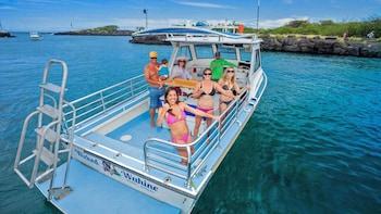 Captain Cook Monument & Kealakekua Bay Snorkelling Tour with Lunch
