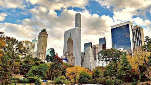 view of the city from Central Park in New York