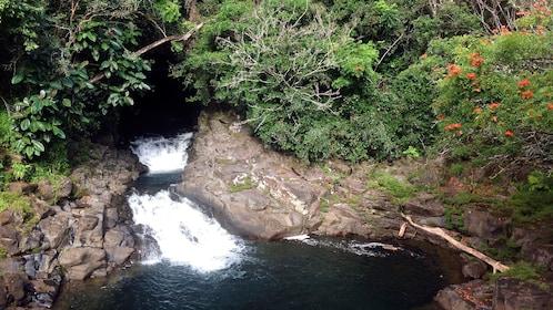 Small waterfall at Akaka Falls State Park in Hawaii