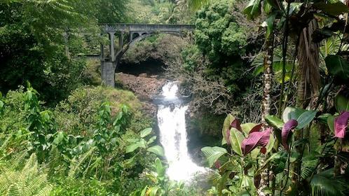 Beautiful waterfall view on the Big Island