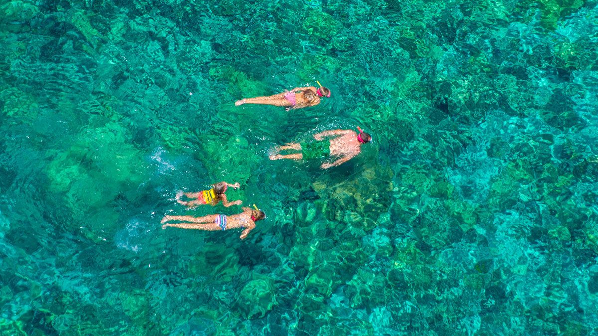 Afternoon Snorkel Cruise to Kealakekua Bay State Park