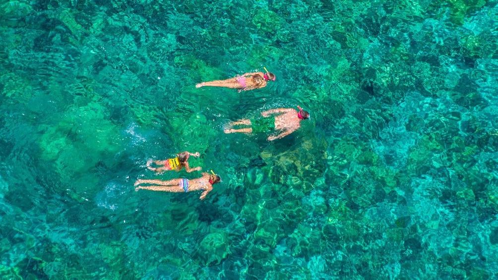 Catamaran Cruise & Kealakekua Bay Snorkel