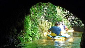 Kohala Ditch Kayaking Tour