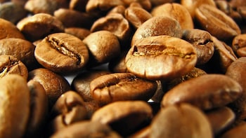 Private Kona Coffee Tour
