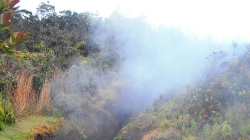 steam vents in Hawai'i Volcanoes National Park on the Big Island