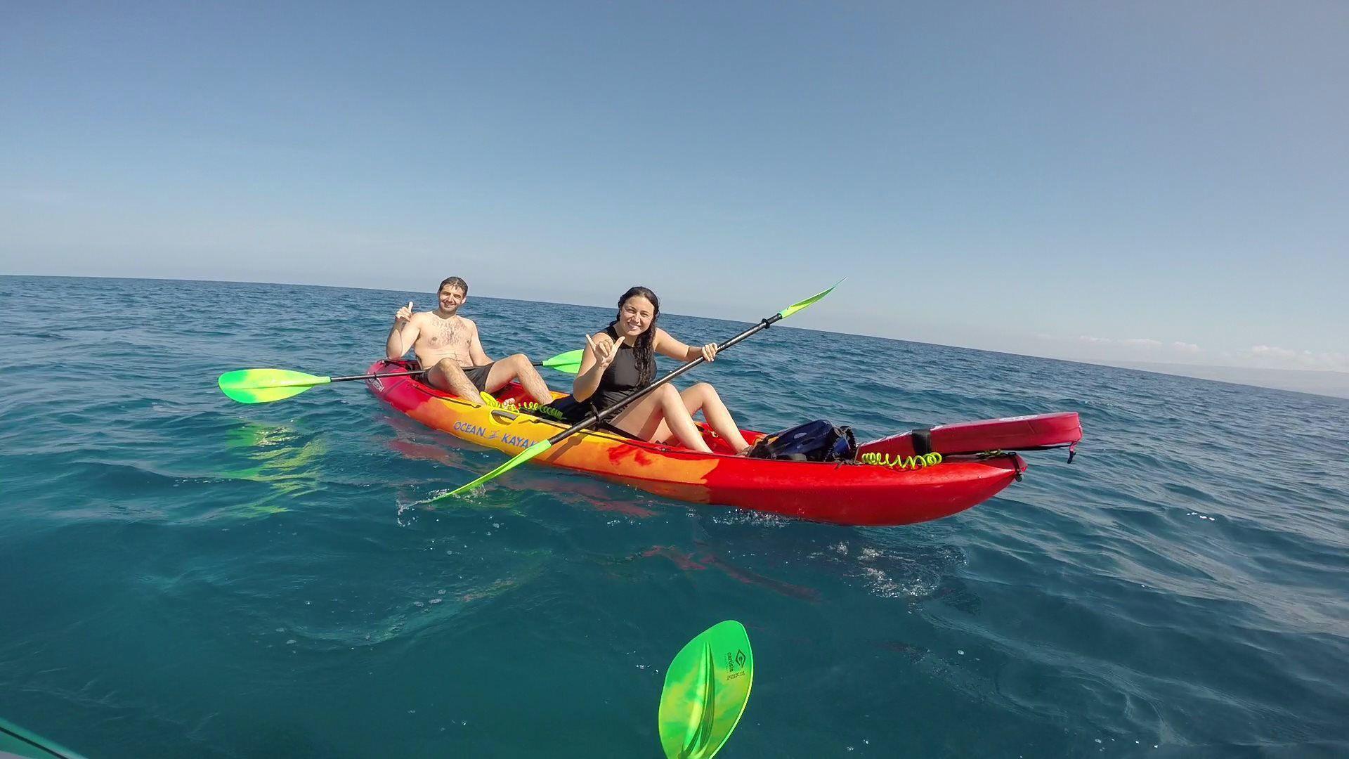 Kayakers along the Kohala coastline to sanctuary on the Big Island