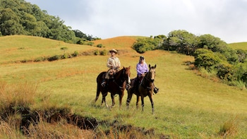 Private Horseback Ride on Piiholo Ranch
