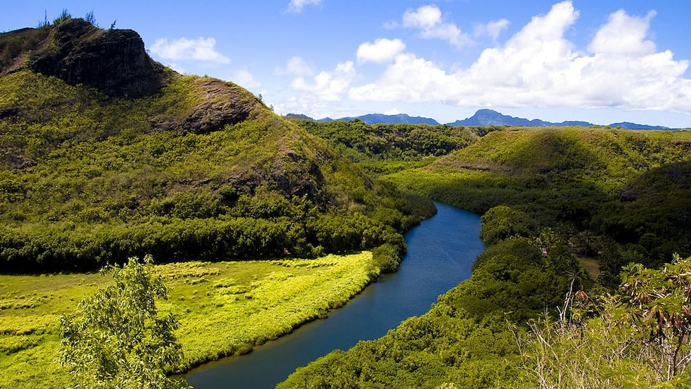 Show item 1 of 4. A river in Kauai