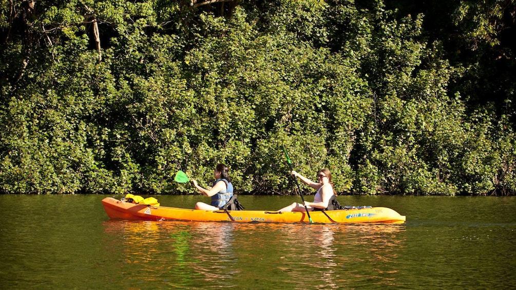 Show item 3 of 4. two people in kayak paddling down river in Kayak