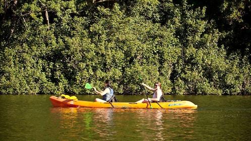 two people in kayak paddling down river in Kayak