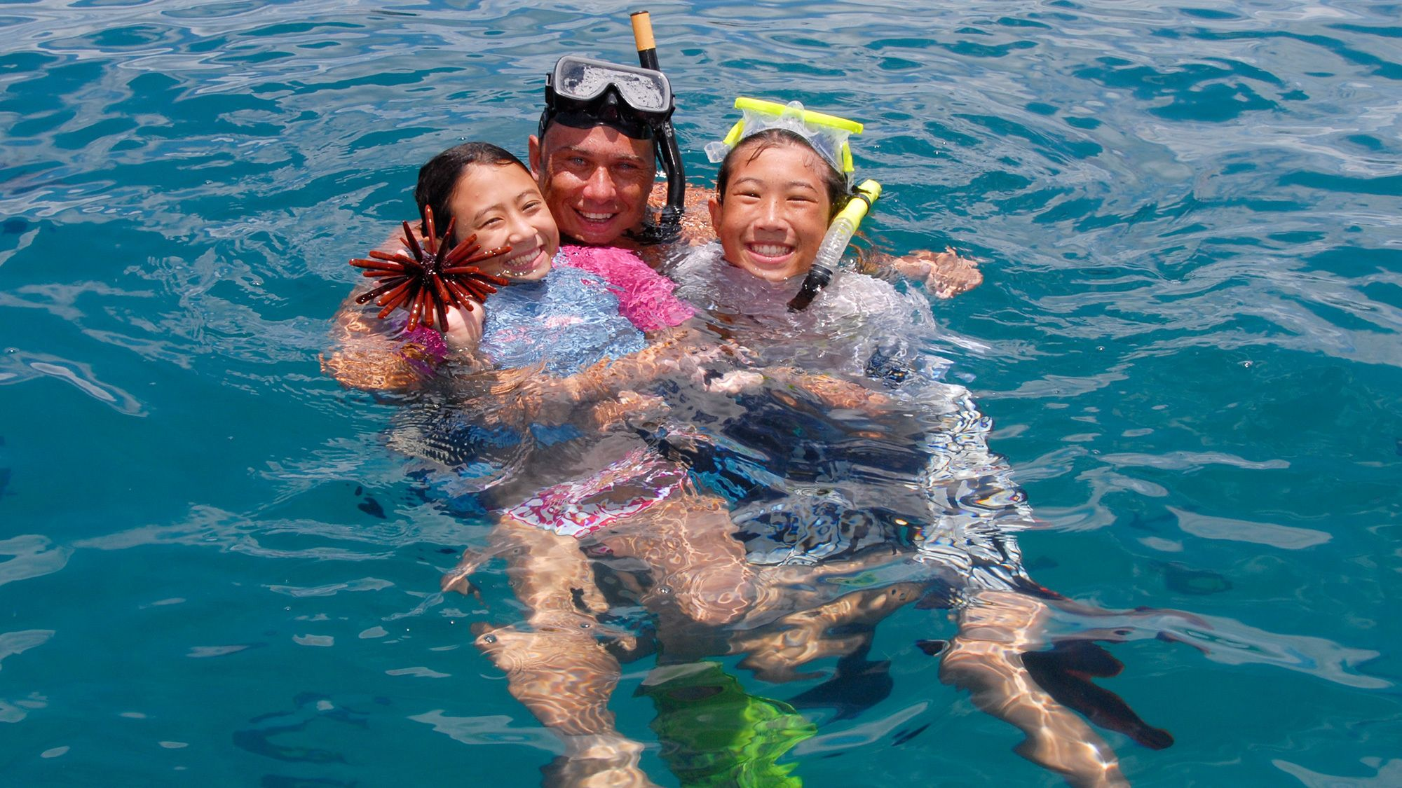 Wild Dolphin Watch Cruise with Snorkelling & Barbecue Lunch