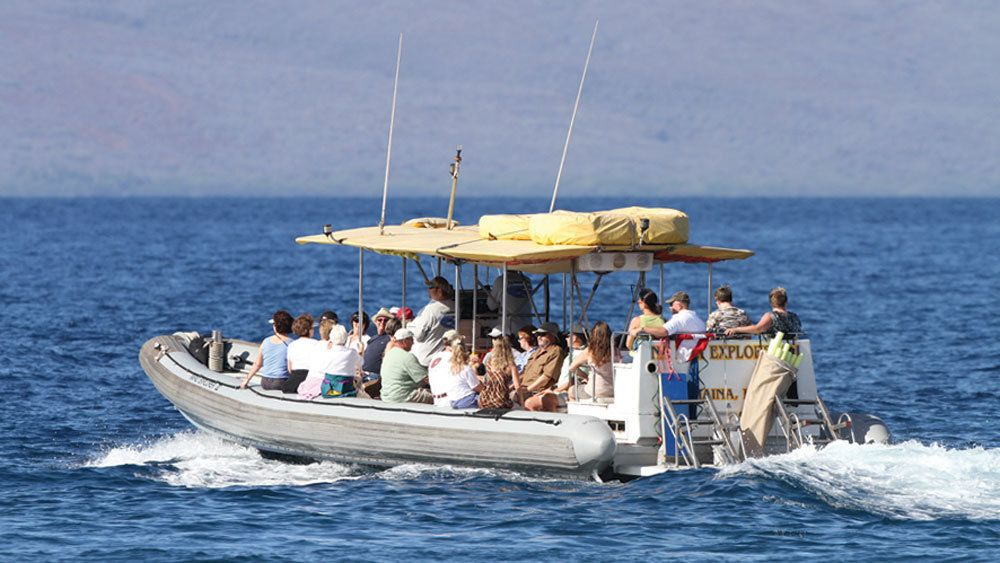 Cruise along the Island of Lanai with a small tour group