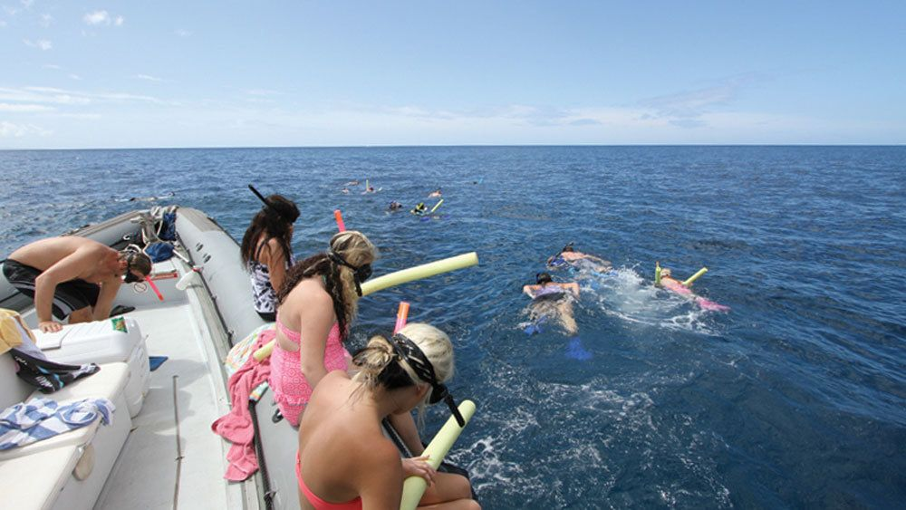Snorkel in the peaceful waters of Lanai with a small group