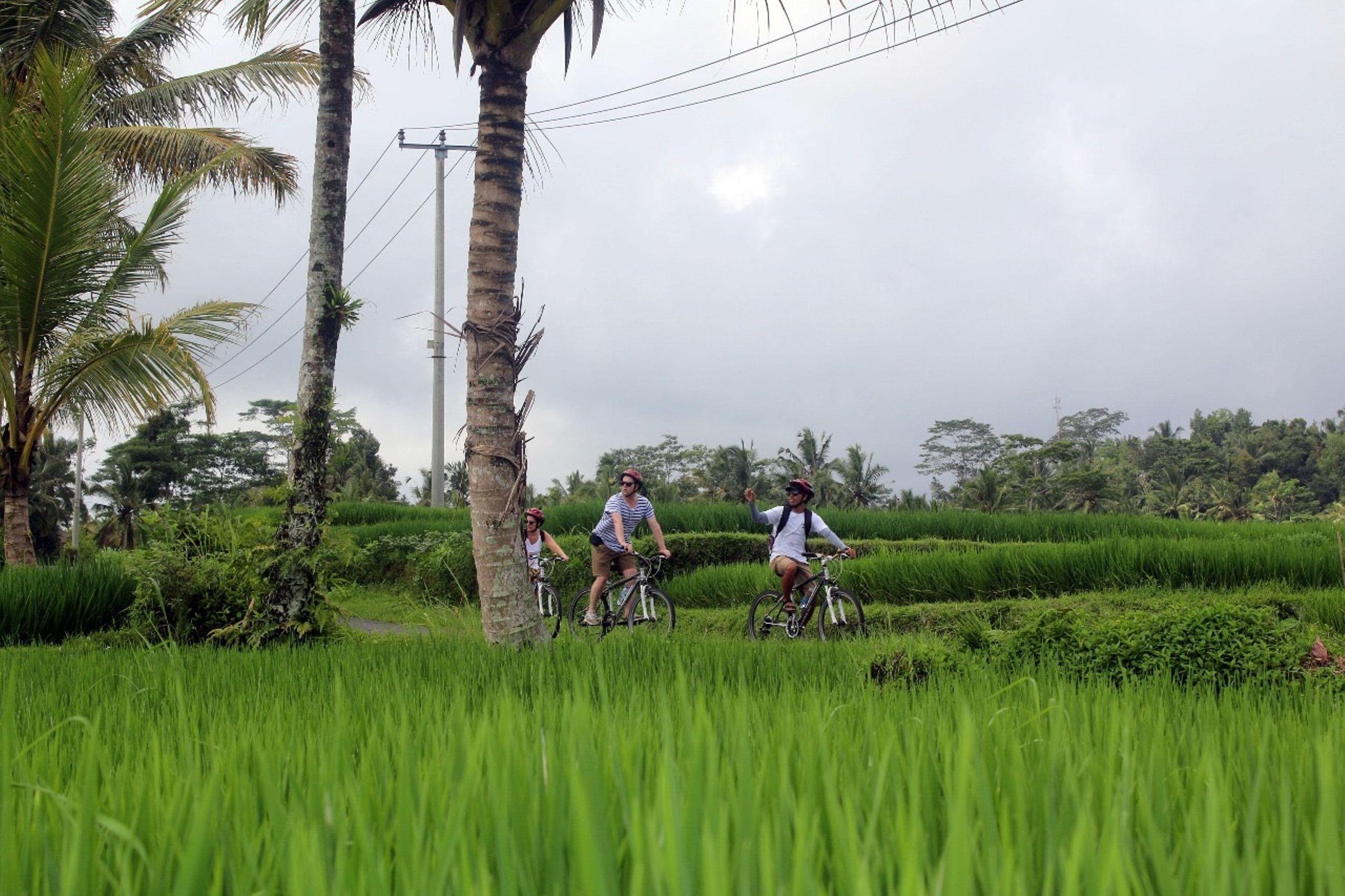 Tur Budaya Bersepeda Menuruni Bukit dengan Makan Siang