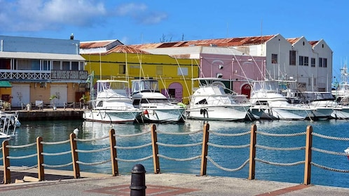 boats docked at the bay in Barbados