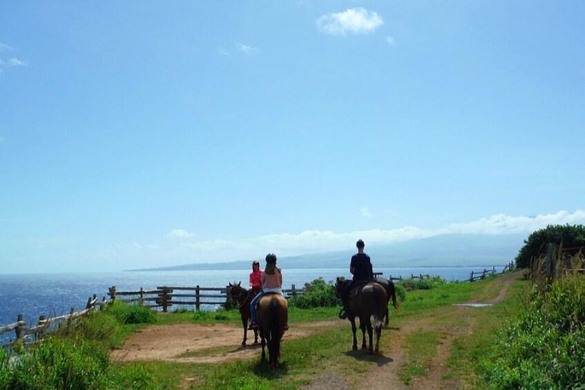 Show item 4 of 8. Oceanfront Horseback Trail Ride