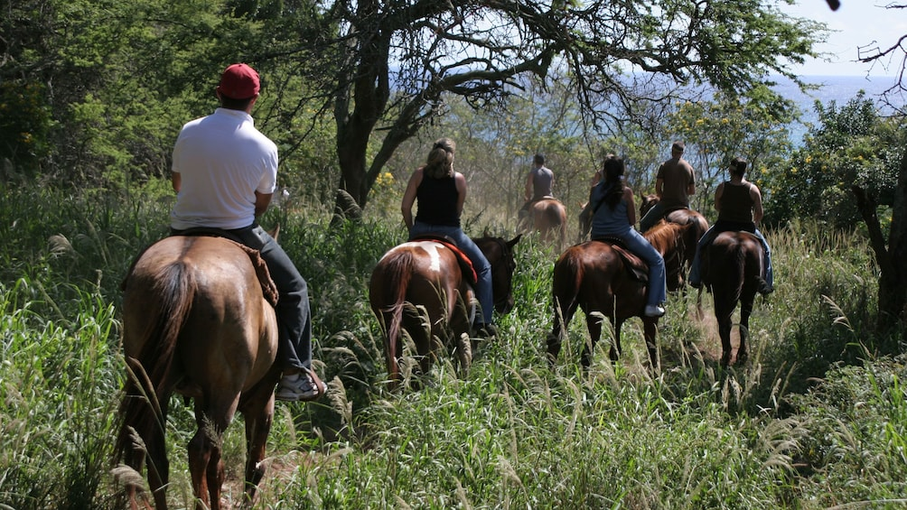 Show item 2 of 8. People horseback riding on a trail in Maui