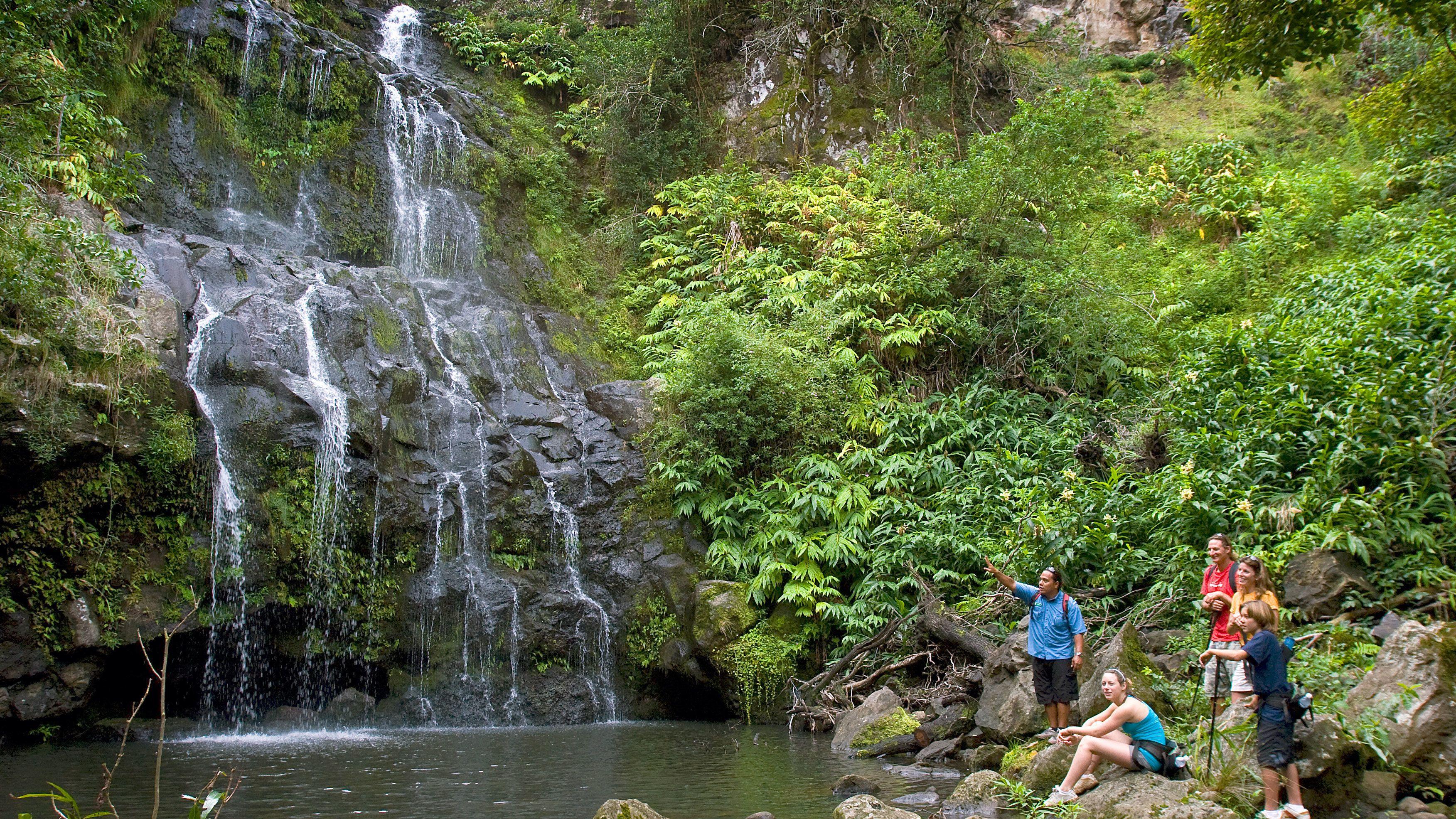 Group sitting near waterfall in Hawaii