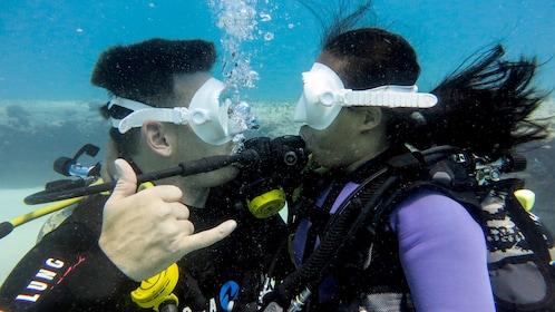 Scuba divers on Oahu