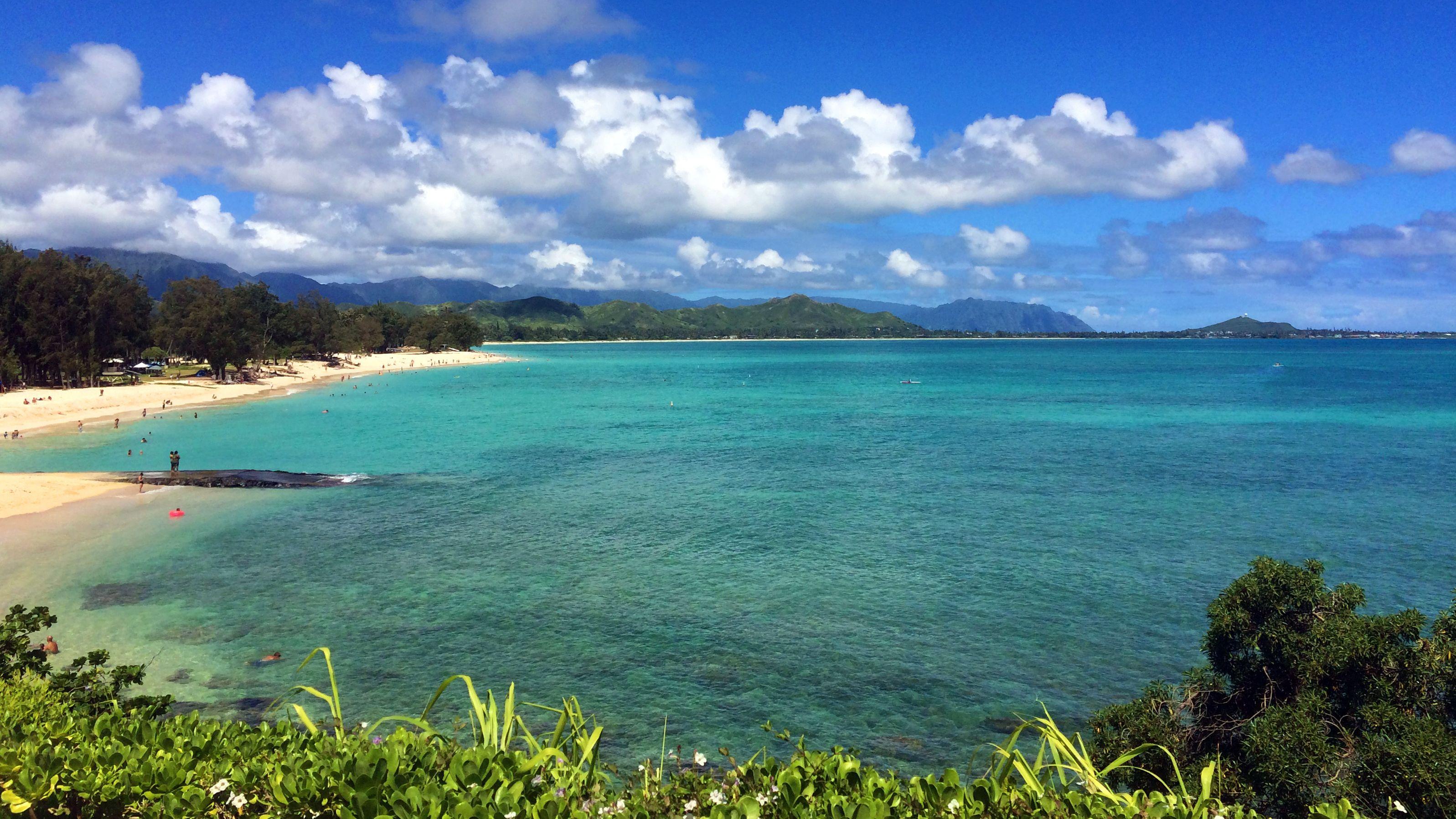 Aerial view of beach in Kauai