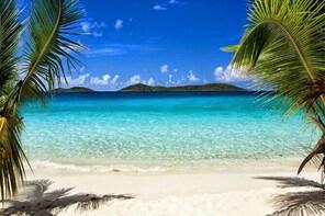 3-Day Private Tour Ile a Vache Haiti Snorkelling and Discover
