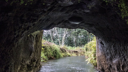 cave entrance in river in Kauai