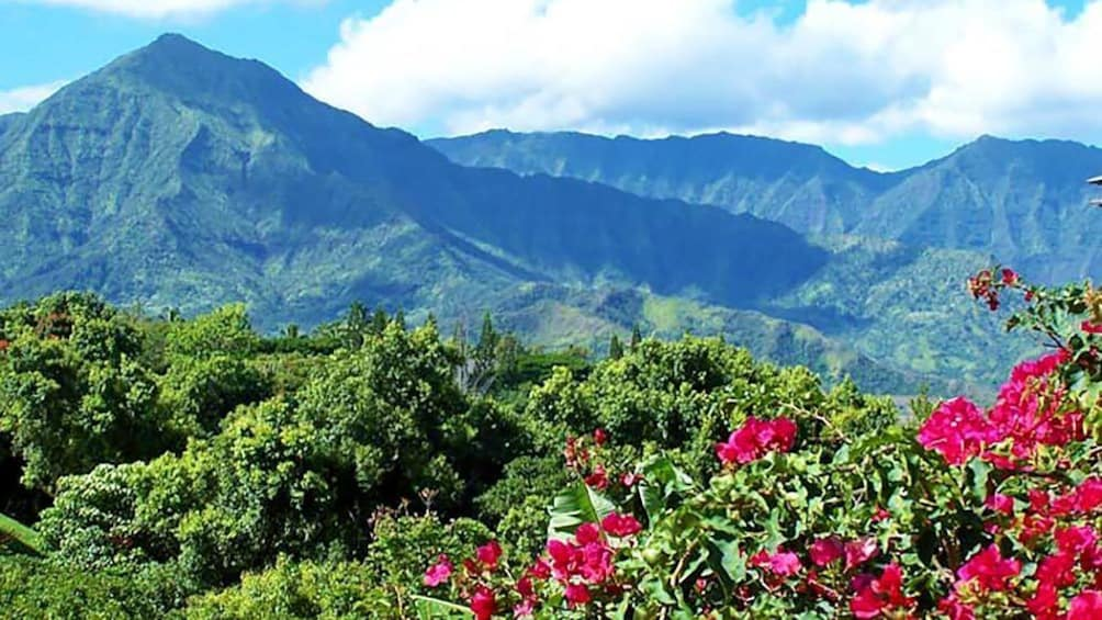 Landscape view of Kauai mountains during the day.