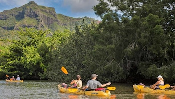 Guided Kayak Tour on Wailua River and Hike to Sacred Falls