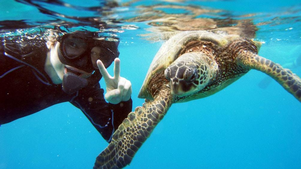 Catamaran Sail & Snorkel Tour in Hawaii