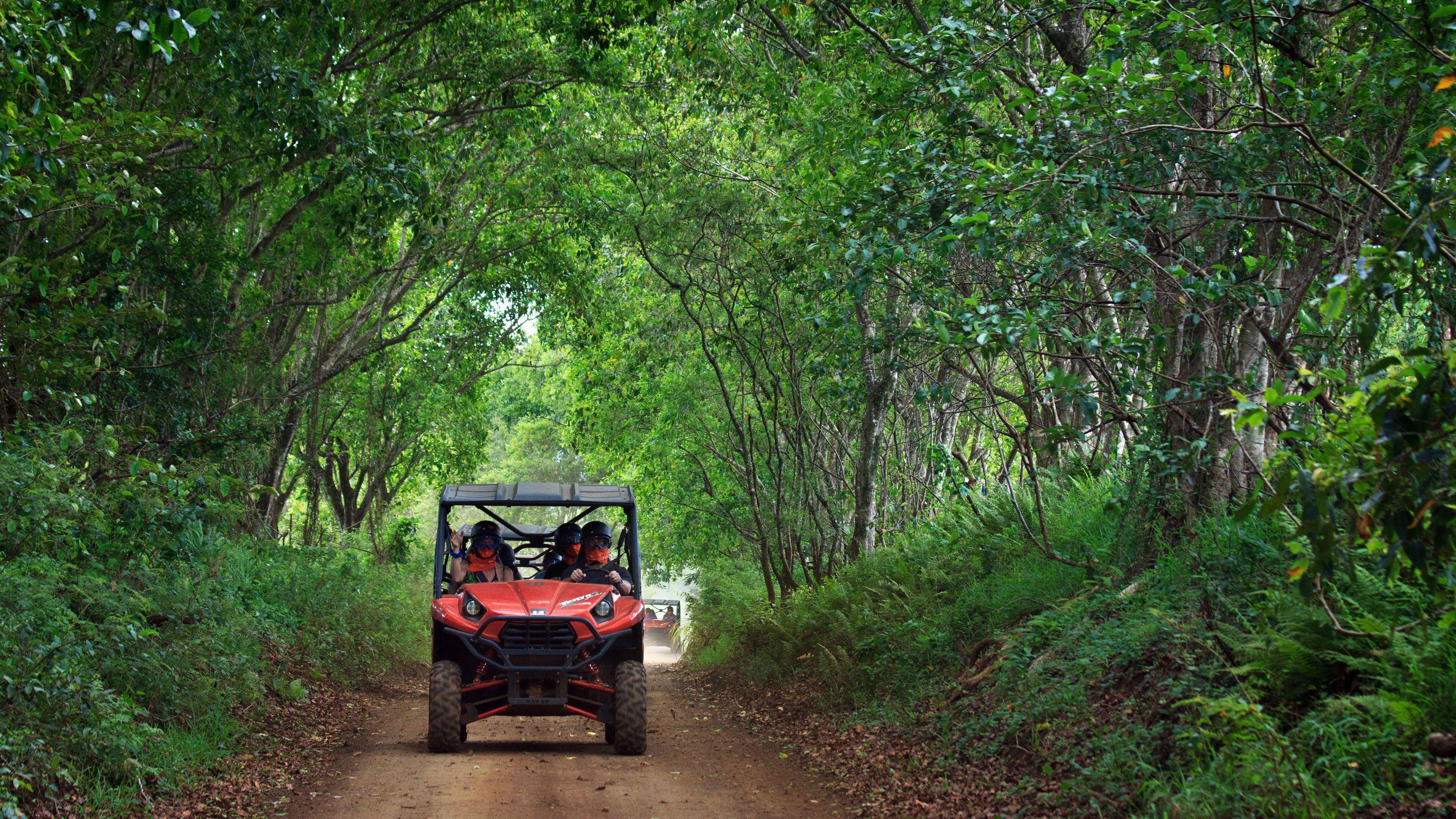4x4 Waterfall Jungle Tour in Kauai