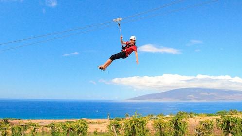 woman ziplining over a dragon fruit farm in Maui